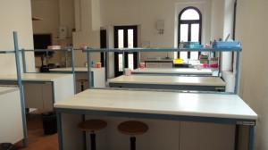 Lab-did (5)